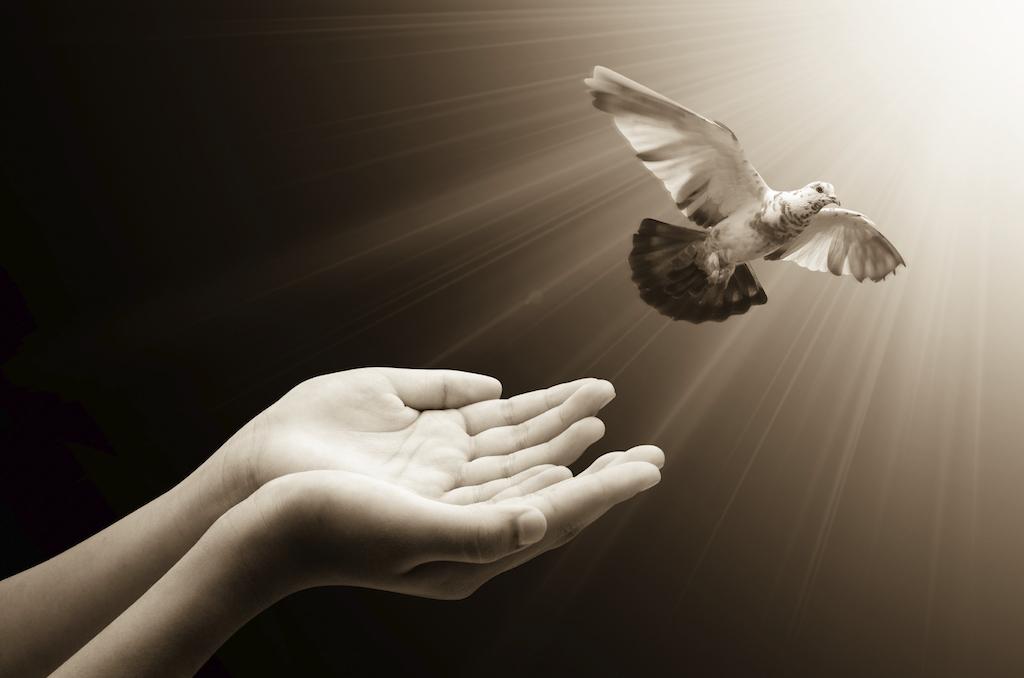 Pentecost: now what