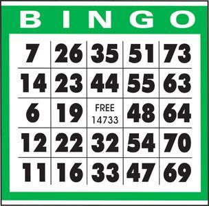 Bingo_3