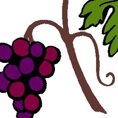 Grapes-Vine