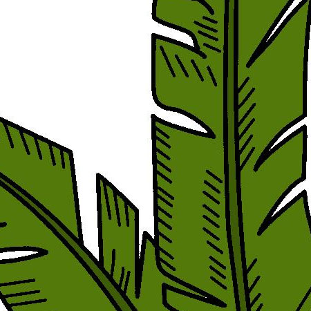 Palms-Leaves