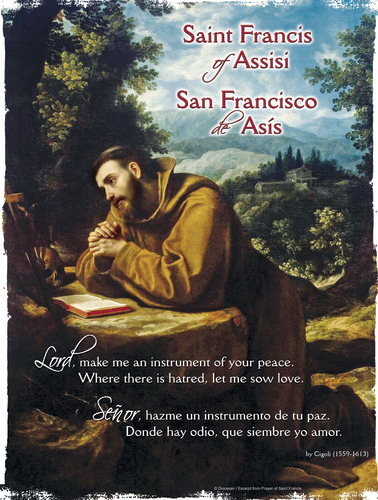 St. Francis of Assisi in Prayer Bilingual