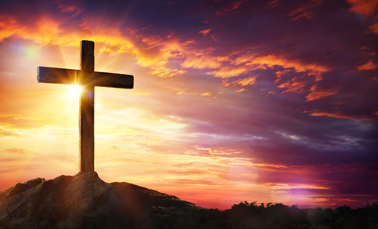 may we thrive on the cross diocesan
