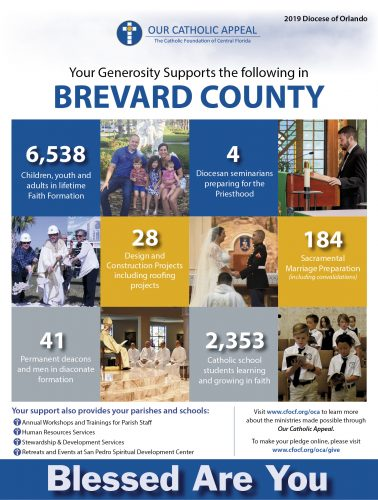 Brevard County Appeal English
