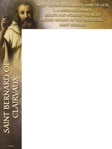 St. Bernard Wrapper