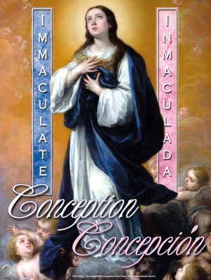 Immaculate Conception Cherubs - Bilingual