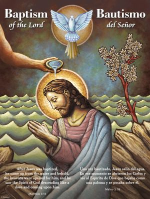 Bilingual Baptism Dove
