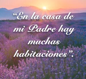 Fifth Sunday of Easter - Gospel - Spanish