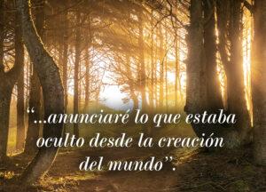 Ordinary Time - Week 16 - Gospel - Spanish