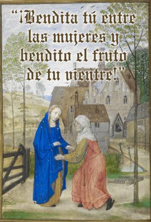 Assumption of the Blessed Virgin Mary - Gospel - Spanish