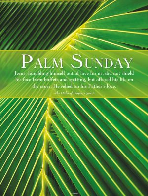 Palm Sunday Palm