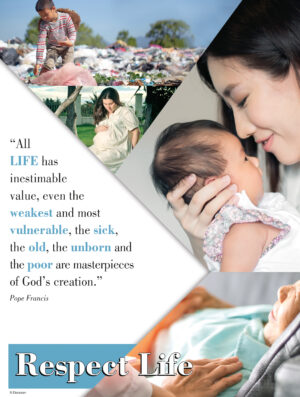 All Life Has Value