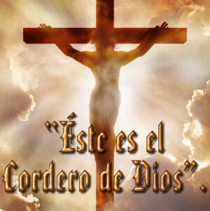 Ordinary Time - Week 2 - Gospel - Spanish