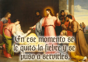 Ordinary Time - Week 5 - Gospel - Spanish