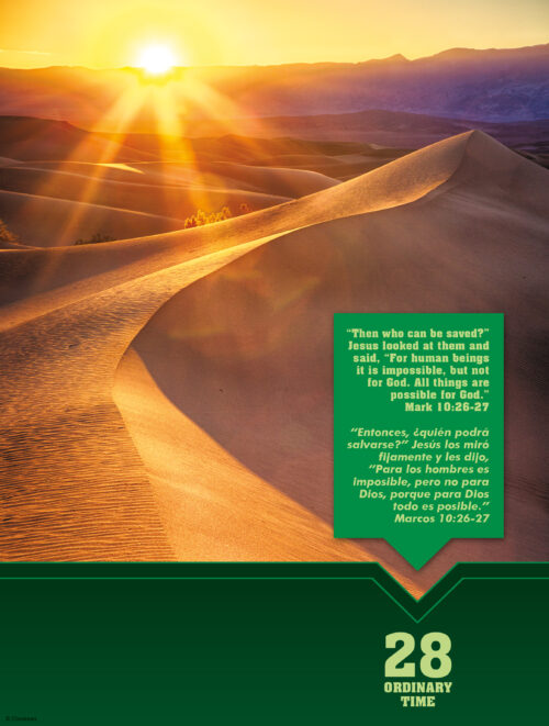 28th Sunday of Ordinary Time - Scenic - Bilingual