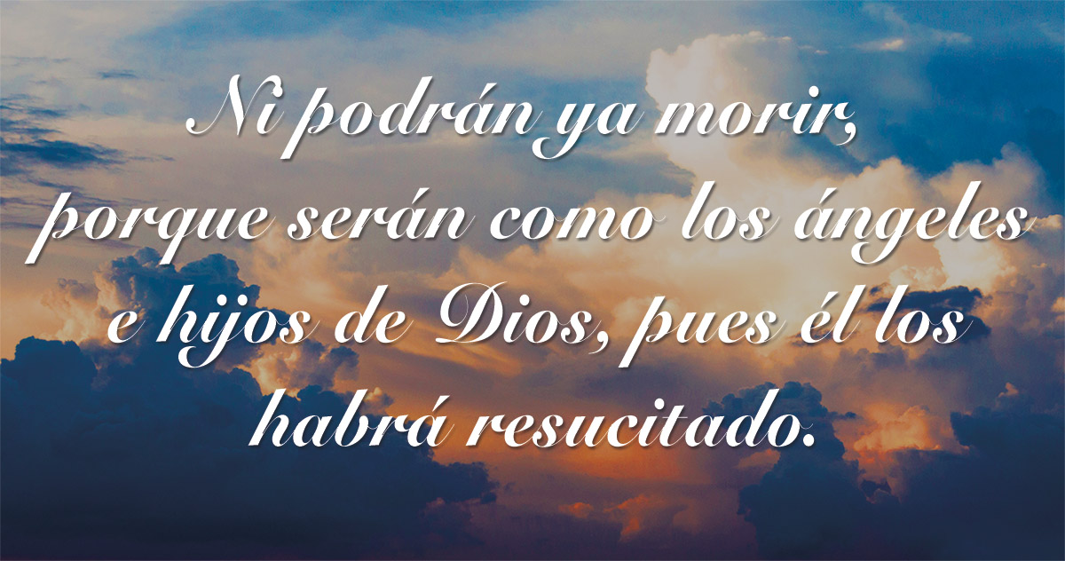 32nd Sunday in Ordinary Time - Gospel - Spanish